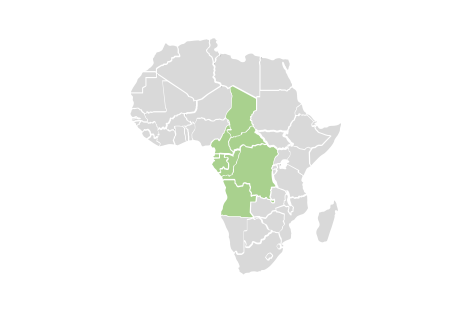 regional map of central african countries